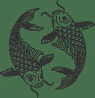 Dan Balboa Fotografía logo